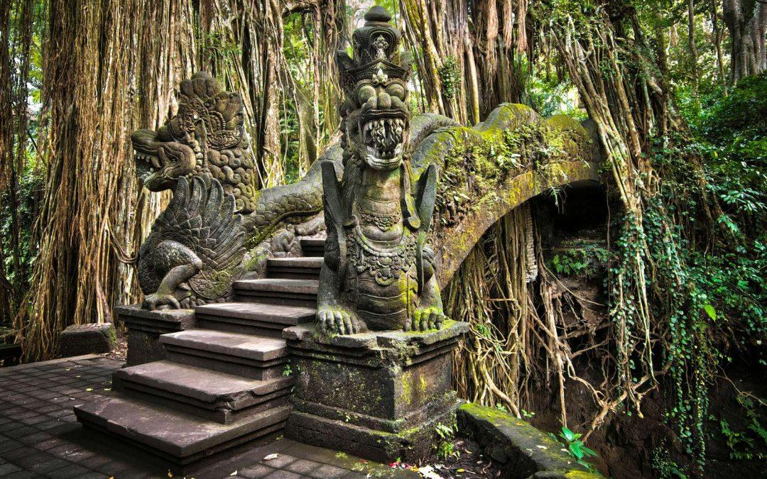 Der Monkey Forest in Ubud – Von Affen und Tempeln