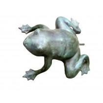 Frosch als Wasserspeier