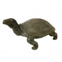 Schildkröte, Wasserspeier