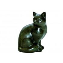 Katze grün sitzend