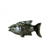Fisch schwimmend