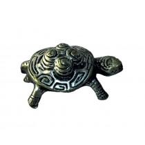 Schildkröte, M
