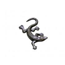 Eidechse/Salamander