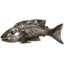 Fisch mit breitem Maul