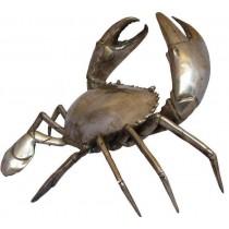Riesen-Krabbe